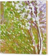 Pine Tree Covered With Snow Wood Print