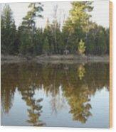 Pine Trees Across Mississippi River Wood Print