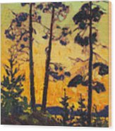 Pine Trees At Sunset Wood Print
