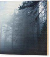 Pine Trees In Fog Wood Print