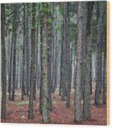 Pine Trees Wood Print
