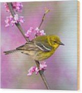 Pine Warbler Wood Print
