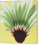 Pineapple Flower Wood Print