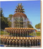 Pineapple Fountain Charleston Sc Wood Print
