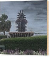 Pineapple Fountain Wood Print