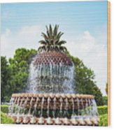 Pineapple Fountain In Charleston South Carolina Wood Print