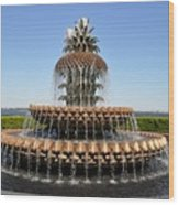 Pineapple Fountain In The Park Wood Print