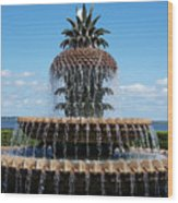 Pineapple Fountain Wood Print