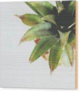 Pineapple Top 2- Art By Linda Woods Wood Print