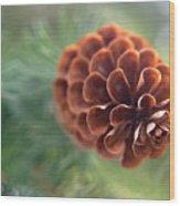 Pinecone-1 Wood Print
