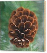 Pinecone-4 Wood Print