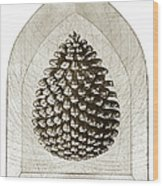 Pinecone Wood Print by Charles Harden