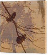 Pinecone Overlay Bright Horizontal Wood Print