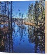 Pinelands Wood Print