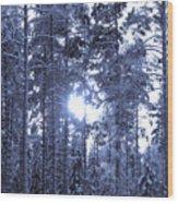 Pines 4 Wood Print