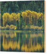 Pines And Aspens Wood Print