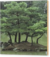 Pines On Island In The Gardens Wood Print