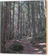 Pineta Di Schilpario Wood Print