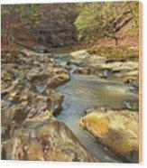 Piney Creek Ravine Revisited 1 Wood Print