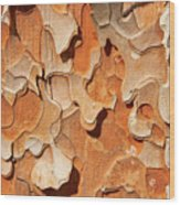 Pining For A Jig-saw Puzzle Wood Print