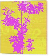 Pink Abstract Tree Wood Print