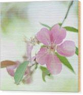 Pink Airy Marvel Wood Print