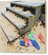 Pink And Blue Flip Flops By The Steps Wood Print
