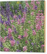 Pink And Lavender Wood Print
