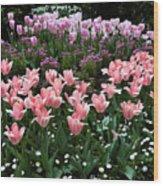 Pink And Mauve Tulips Wood Print