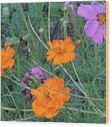 Pink And Orange Merger Wood Print