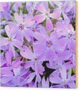 Pink And Purple Spring Wood Print