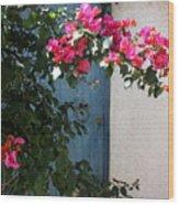 Pink And Teal Wood Print