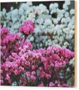 Pink And White Azelas Wood Print