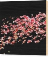 Pink And White Bush Wood Print