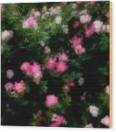 Pink And White Roses Wood Print