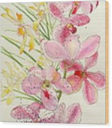 Pink And Yellow Orchids Wood Print