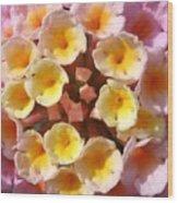 Pink And Yellows Wood Print