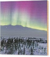 Pink Aurora Over Boreal Forest Wood Print