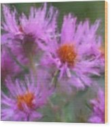 Pink Autumn Flowers Wood Print