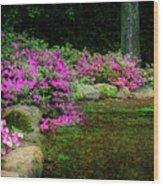Pink Azaleas At The Azalea Festival Wood Print