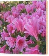 Pink Azaleas II Wood Print