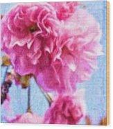 Pink Bellos Wood Print