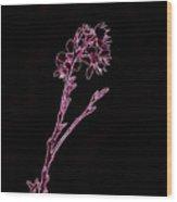 Pink Blooming Branch In Prayer Wood Print
