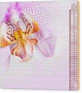 Pink Blotchy Orchid Calendar 2016 Wood Print