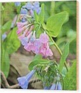 Pink Bluebells Wood Print