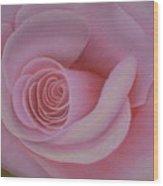 Pink Blush Wood Print
