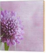 Pink Bokeh Wood Print