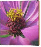 Pink Breeze Wood Print