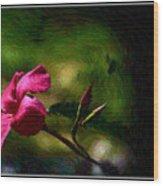 Pink Bud Wood Print