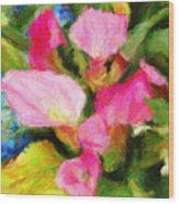Pink Calla Lilly Wood Print